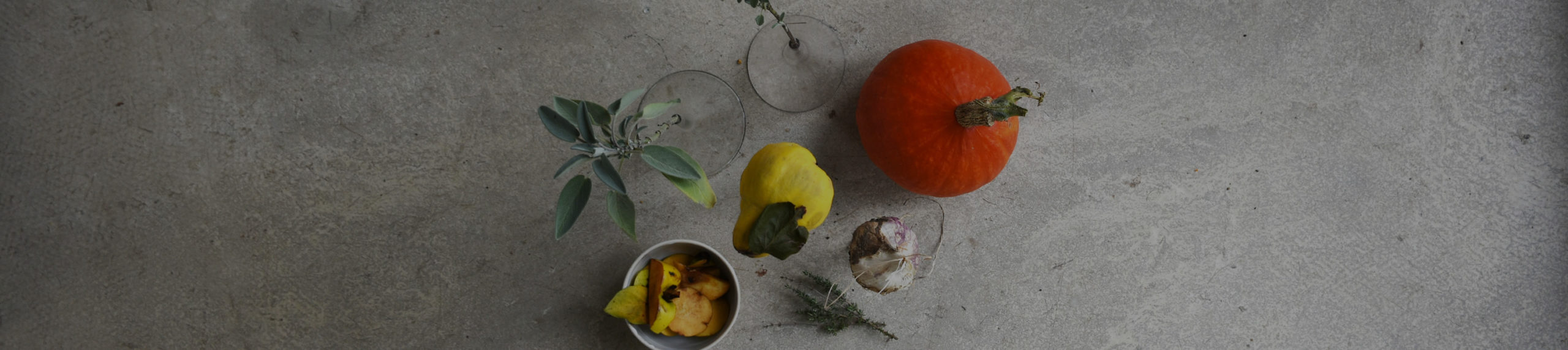 Atelier cuisine et dégustation Eloïse Monziès
